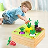 CENOVE Montessori Wooden Toys for 1 2 3 Year Old Boy Girl,STEM Educational Toys...