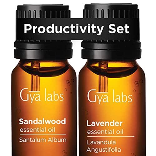 Top 10 Best essential oil labs lavender oil Reviews