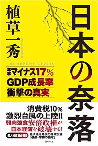 日本の奈落 (TRI REPORT CY2015)の詳細を見る
