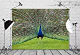 BELECO 7x5ft Peacock Backdrop Peacock Showing His Feathers Phtography Backdrop for Birthday Party Decoration Baby Shower Photoshoot Photo Background Props