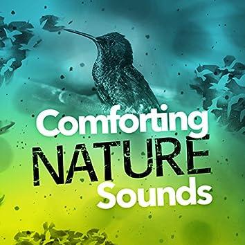 Comforting Nature Sounds