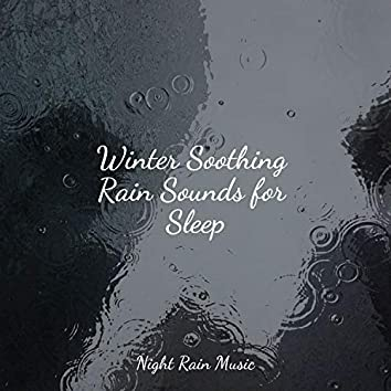 Winter Soothing Rain Sounds for Sleep