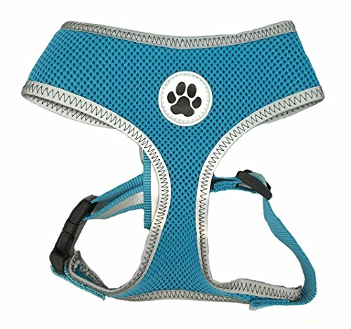 Lanyar Small Turquoise Cute Padded Reflective Mesh Dog Puppy Harness No Pull Pet Cat Harnesses,Small Size