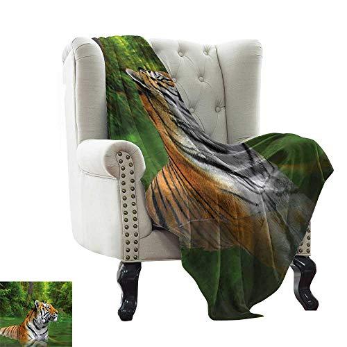 BelleAckerman - Manta de Cama con diseño de Tigre, Antiguo calandro Maya, con Cabeza de Gato Cazador, Sabio Feline Antiguo, culturas, Color marrón pálido, Dorado y Microfibra, para Cama o sofá