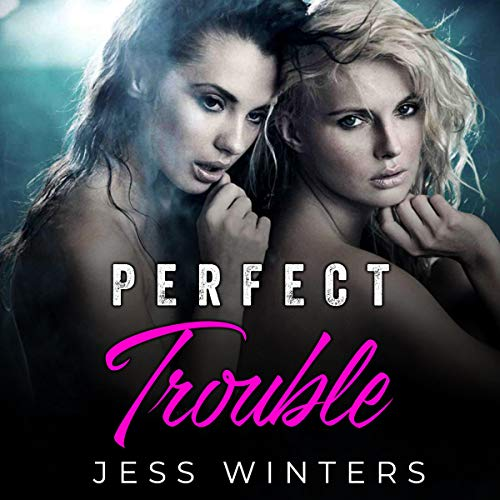 Perfect Trouble  By  cover art