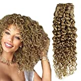 Hetto Remy Wavy Hair Extensions 14 pulgada Clip in Hair Colored Extensions Oscuro...