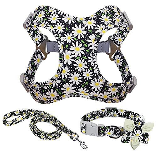 Conjunto de Correa de arnés de Nailon con Estampado de Flores para Perros, Chaleco para Mascotas, Correas de Cuello para Perros pequeños, medianos y Grandes-Negro, M