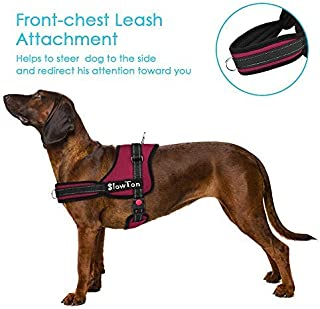 SlowTon No Pull Dog Vest Harness Adjustable Neck Chest Strap Breathable Padded Vest (M, Dual D-Ring - Burgundy)