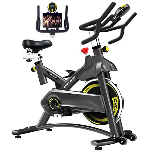 Cyclace Indoor Exercise Bike Stationary Cycling Bike with...