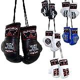 Dynamix Athletics V2 - Guantes de boxeo para coche, con espejo interior, 6 diseños geniales (Muay Thai – blanco)