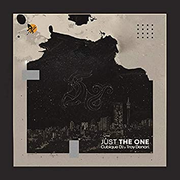 Just the One (feat. Troy Denari)