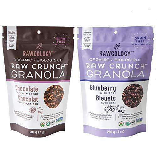 Rawcology - 2 Granola Keto Pack | Cioccolato Mirtilli | 100% Organico & Naturale | Granola Healthy | Senza zuccheri aggiunti, Senza glutine, Paleo | 200g | Granola Bio dimagrante | Dieta Chetogenica