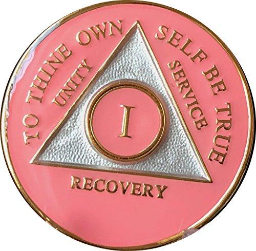 Pink Schienbeinschützer Tri AA Medaillon Jahr 1–45oder 24Stunden oder 18Monat Serenity Gebet Chip