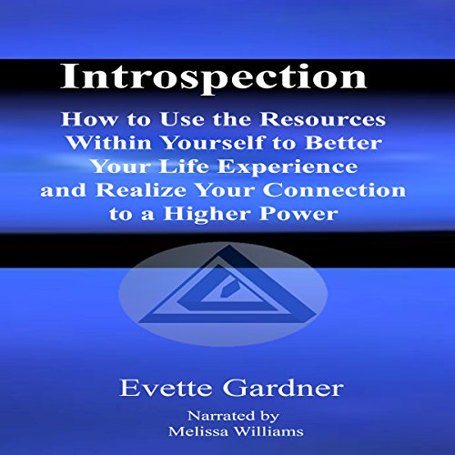 Introspection audiobook cover art