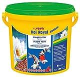 sera KOI Royal medium ein Koifutter bzw. Hauptfutter für die