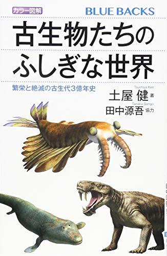 カラー図解 古生物たちのふしぎな世界 繁栄と絶滅の古生代3億年史 (ブルーバックス)の詳細を見る
