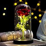 Rosa Bella y Bestia Flor Artificial con Luz LED Kit Rosa de Seda en Cúpula de Cristal Rosa Encantada Decoración Regalo para Día de San Valentín Aniversario Boda Cumpleaños (22*11.5CM, Flor Rojo)