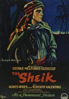 Sheik [DVD] [Import]
