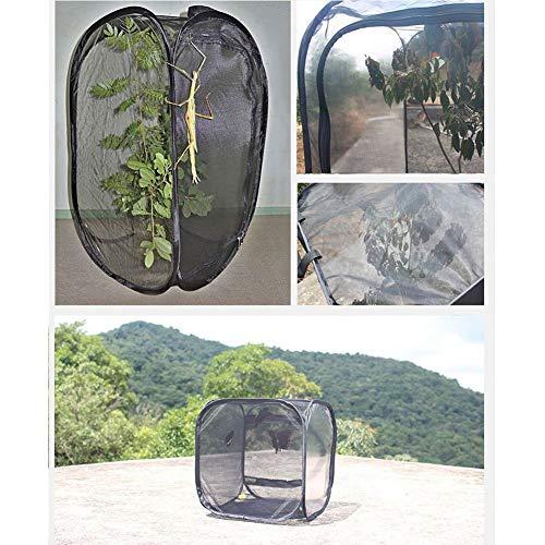 PanDaDa Insekten und Schmetterlingskäfig für Foster, Schmetterlingskäfig Transparente Pflanzensämlinge Transparenter Käfig Tragbarer, zusammenklappbarer Insektenkäfig