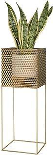 TYUIO Soporte de Planta para macetas para Interiores y Exteriores - Blanco/Dorado/Negro, Soporte de Metal para macetas para la casa, jardín y Patio (Color : Oro)