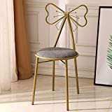 Knocbel Metal Vanity Chair Cushioned Padded Seat Makeup Dressing Stool Bench with Butterfly Backrest (Gray)