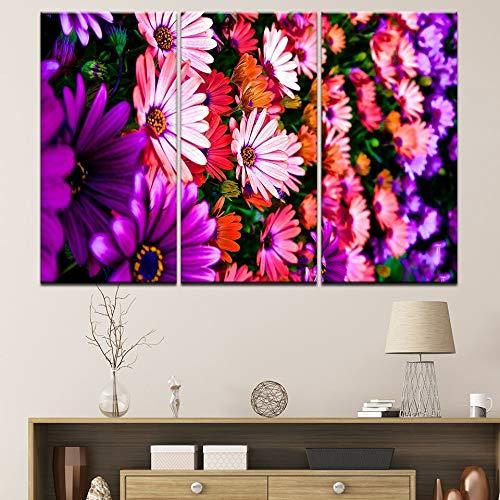 Pintura sin Marco HD Grabado póster Arte de la Pared 3 Hermosas Flores Coloridas Moderna Sala de Estar decoración del hogar ZGQ3804 50x100cmx3