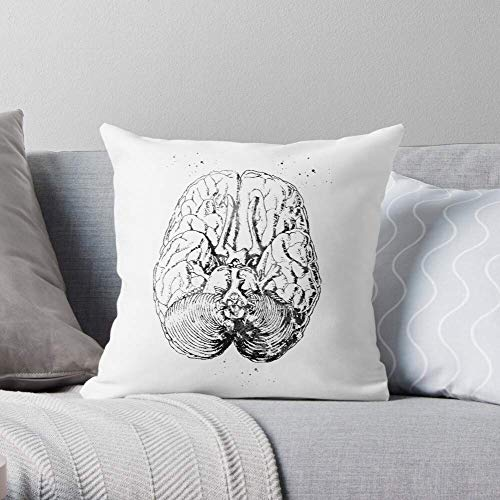 XCNGG Art Section Anatomical Anatomy Human Brain Illustration Science - Pillow Case Cotton Polyester - Indoor Decorative Pillow Square Cushion Cover for Bedroom Sofa Living Room