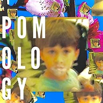 Pomology