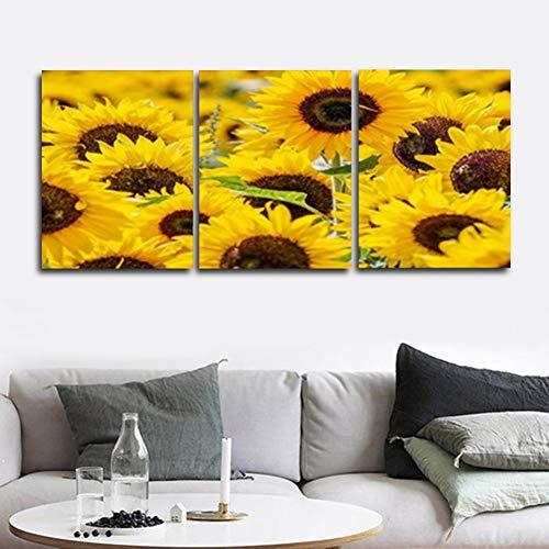 YXWLKG 3 Leinwandbilder 30 cm x 40 cm x 3 Stücke Kein Rahmen 3 Panel Garten Poster und Drucke Sonnenblume Leinwand Gemälde Wandkunstwerk Abstrakte Bilder Home Wohnzimmer Dekoration