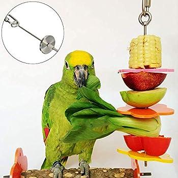 Porte-Nourriture pour Oiseaux, 1 Pcs Fruit Perroquet, Jouet Perroquet Brochette Acier Inoxydable, Fruits Alimentaires Fixes pour Cages à Perruches, Perroquets Oiseaux, Budgies, Perruches (L)