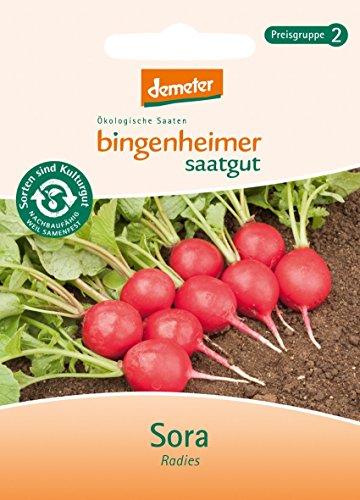 Bingenheimer Saatgut - Radieschen Radies Sora - Gemüse Saatgut / Samen