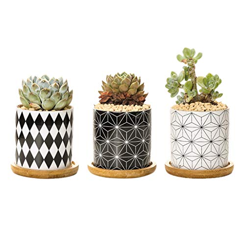 luosh Succulent Pot Planter Flower Pot Céramique Planter Indoor with Bamboo Tray for Cactus, Herbs, Home