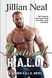 Fractured H.A.L.O.: HALO Book 3, hot contemporary military romantic suspense/action adventure, drug mafia/computer geek romance (Broken HALO)