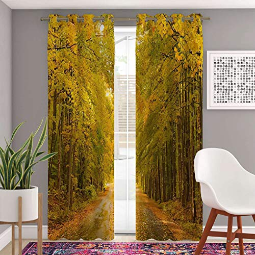 """Trikptey Fall Country Curtains Michigan Fall Massachusetts Road Cloudy Color Country Elk Blackout Grommet Window Curtains for Bedroom Living Room Set of 2 Panels 2 Tiebacks Included 104""""x63"""""""