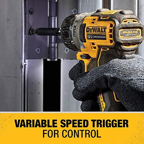 DEWALT XTREME 12V MAX Cordless Screwdriver, 1/4-Inch, 2-Ah Batteries (DCF601F2)