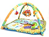 Little Archer & Co.™ Baby Floor Activity Play Gym, Great for Learning