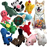 Squeaky Plush Dog Toy Pack for Puppy, Small Stuffed Puppy Chew Toys 12 Dog Toys Bulk with Squeakers, Cute Soft Pet Toy for Small Medium Size Dogs