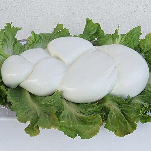 Treccione Mozzarella di Bufala (3 kg)