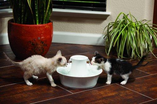 PetSafe(ペットセーフ)自動給水器ドリンクウェルアバロンセラミックペットファウンテン愛猫愛犬用