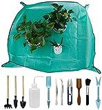 XQXC 12PCS Mini Set de Herramientas de trasplante de jardín, Es Adecuado para excavar, aflojar, trasplantar o regar suculentas, Plantas en macetas y Plantas de Interior (Green)