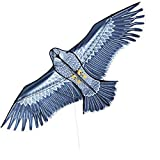 XiaoOu Cometa para niños 1.6m Enorme Cometa águila con Cuerda Novedad Cometas de Juguete Águilas Volando Grande paraRegalo, Estilo C