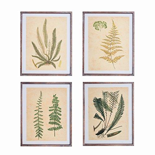 NIKKY HOME Vintage Framed Wanddekor mit Fern Botanical Kunstdrucke, Set von 4 - Framed