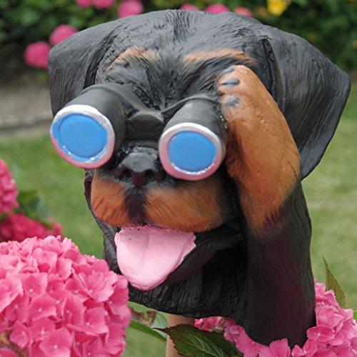 Dekofigur Hund mit Fernglas Spanner Beobachter Agent Gartenfigur Gartendeko
