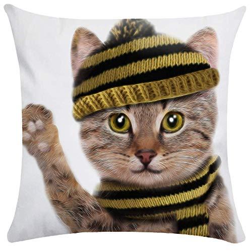 phjyjyeu Fundas de almohada personalizadas con cremallera, diseño de gato divertido, 45,72 x 45,72 cm, decoración para el hogar con dos lados, estilo 4 40,64 x 40,64 cm