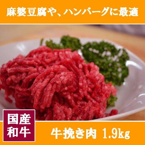 【 国産 和牛 】牛挽き肉 1900g(1、9キロ)【 牛肉 ハンバーグ 麻婆豆腐 料理 に業務用 にも ★】