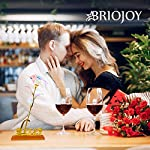 briojoy galaxy rose gift for women – 24k colorful infinity rose birthday gift for girlfriend – anniversary for her, wife – artificial flower present for mother, bestie (with love shaped stand)