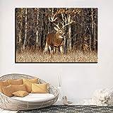 wZUN Decoración de la Sala de Estar Pared Moderna Placa de Lona Popular Animal Ciervo Pintura Imagen Arte 60x90cm Sin Marco