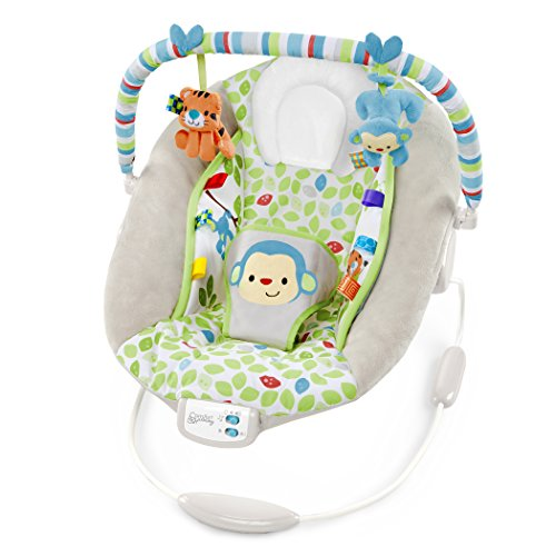 Bright Starts, Babywippe, Comfort & Harmony, Merry Monkey