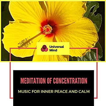 Meditation Of Concentration - Music For Inner Peace And Calm