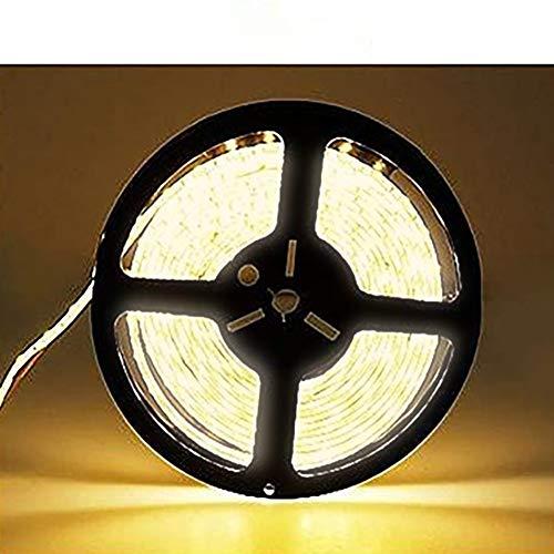 Elinkume - Cable luminoso, plástico, 10M Blanc Chaud SMD5050 (N'est pas étanche) 72 watts 12.00 volts